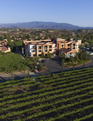 wine vineyards surrounding our luxury Temecula winery hotel