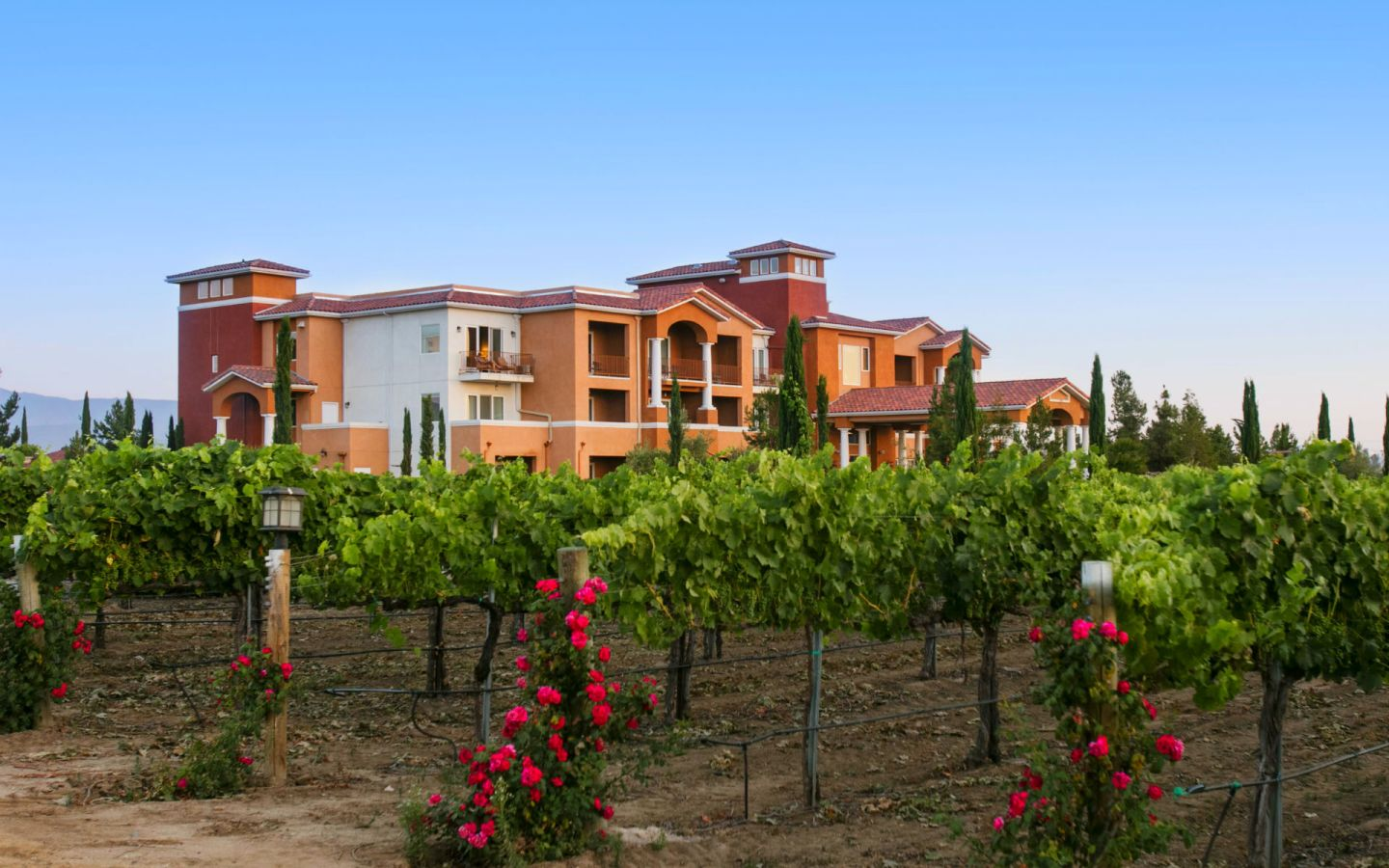Temecula Winery Hotels | Temecula Resort | South Coast Winery